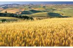 Trace gas analyzers for TCP / DCP - Agriculture