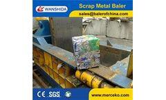 Wanshida - Model Y83-125 - Aluminum Cans Baler/UBC baler/Metal shavings bailer
