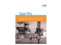 Gas-Pro - Portable Gas Detection Equipment Datasheet