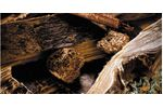Recycling sorting solutions for the wood industry - Forestry & Wood