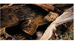Recycling sorting solutions for the wood industry