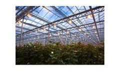 Commercial Horticultural Lighting