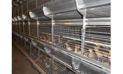 Alaso - Model PS240 - Stacked Pullet Cage System