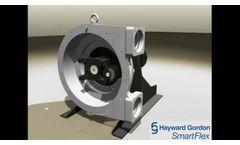 Hayward Gordon SmartFlex Pumps - Video