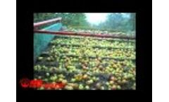 AMB Rousset - Ramasseuse A Pommes R35 Video
