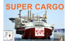 Vietnam Heavy-lift supercargo supervors and surveyors Inspection Company