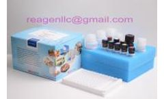 REAGEN - Model RNS 92010 - Fluoroquinolone elisa strip kit