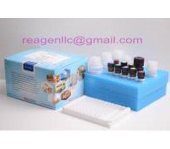 REAGEN - Model RNS92032 - salbutamol rapid test kit