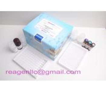 Antigen to Avian Influenza VirusH7 kit
