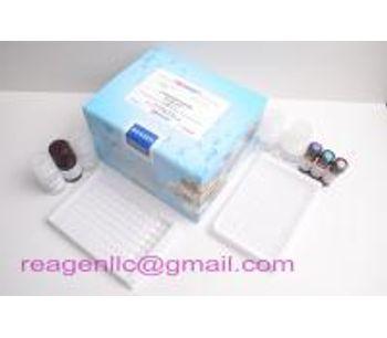 H5 avian influenza virus antigen test kit,rapid