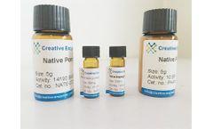 Native Horseradish Superoxide Dismutase