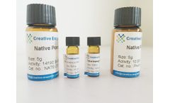 Neutral Protease for Beer Brewing (Food Grade)
