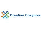 Creative Enzymes - Model SUG-001 - High Temperature Heat Stable Alpha Amylase