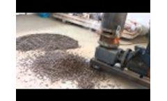 Electric Flat Die Pellet Mill/Electric Flat Die Pellet Making Machine - Video
