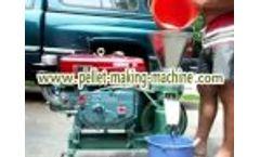 Diesel Flat Die Pellet Making Machine/Flat Die Hammer Mill - Video