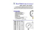BR201D Standard Gauge spec sheet (PDF 202 KB)
