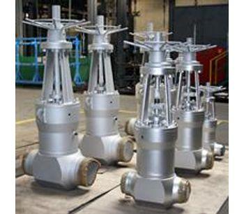Model PN250-630 DN50-400 - High pressure gate valves