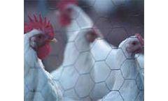 Yeasture - Animal Feed Additive
