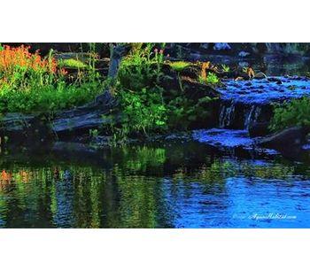Fishing Lakes and Streams-1