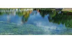 Spring Creek Aquatic Concepts - Fishing Lakes and Streams
