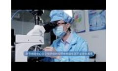 How to operate polarizing microscope MP41 with camera MSX2 Video