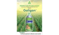 Galigan - Herbicide  - Brochure