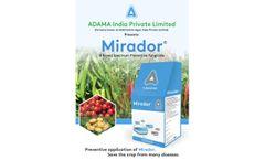 Agan - Model 2,4-D - Herbicide- Brochure