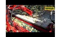 APPLE HARVEST WITH MAJA - Video