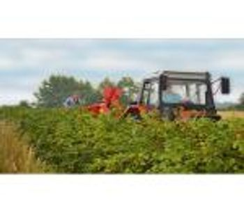 Mechanical Harvest of Berries in the Past and Present
