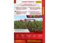 Weremczuk - Model JOANNA PREMIUM - Half-Row Berry Harvester - Brochure