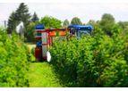 Weremczuk - Model KAREN - Raspberry and Blueberry Harvester