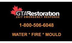 Mold Removal / Remediation Toronto
