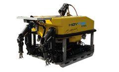 Hoytek Lyra - ROV System