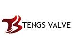 Tengs Valve International Limited