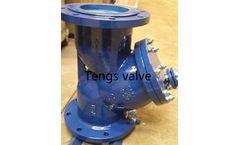 Tengs Valve - Model SY - Industrial Cast Steel Y Type Strainer