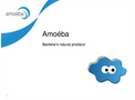 Amoeba Presentation