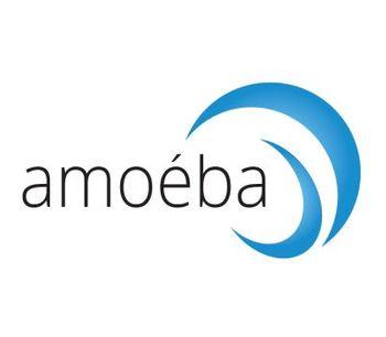 Amoeba - Biological Biocide