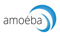 Amoeba Factory Opening Invitation