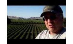 ByoSoil SaltBind Blueberries  Treatments Video