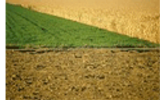 Carbon capture in soil could reduce CO2 emissions