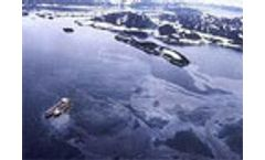 Encouraging bacteria to clean up oil spills