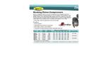 EasyPro Stratus - Model ERP25 - Rocking Piston Compressor Brochure