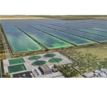Research and development in photosynthesis solutions for wastewater treatment industry - Water and Wastewater - Water Treatment