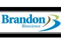 Brandon - Ascophyllum Nodosum