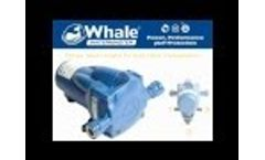 New Whale Watermaster Automatic Pressure Pump Video