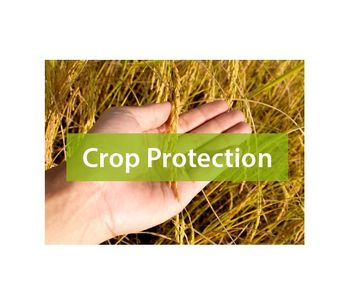 Crop Protection Services