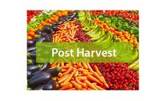Post Harvest Services