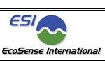 EcoSense International