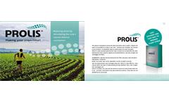 Prolis - Amino Acids Brochure