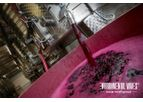 Wine Wastewater Treatment System